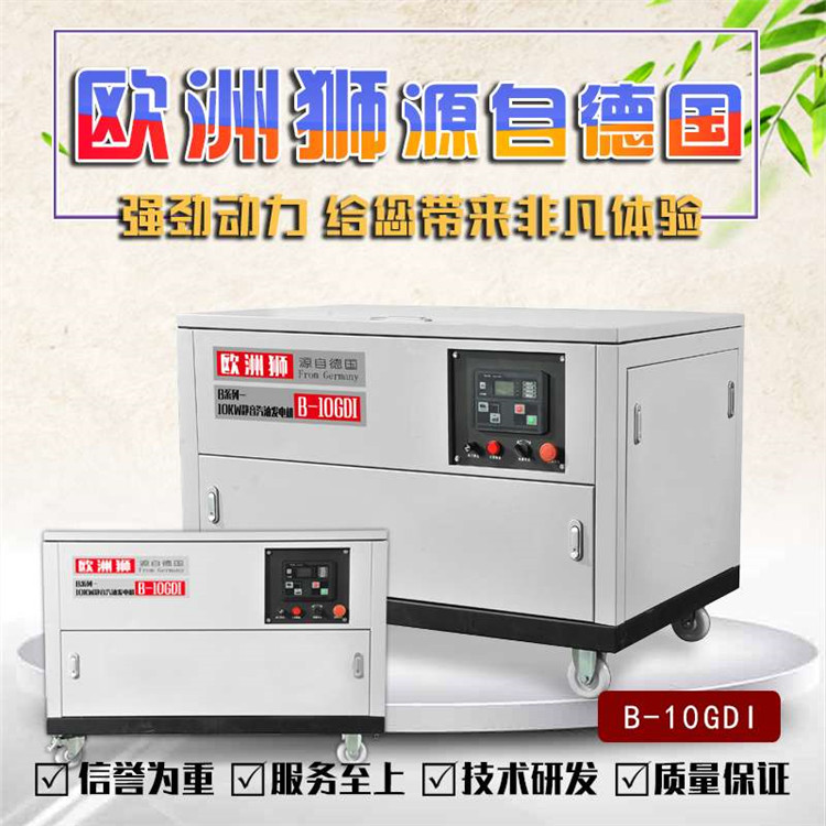 欧洲狮10千瓦汽油发电机B-10GDI