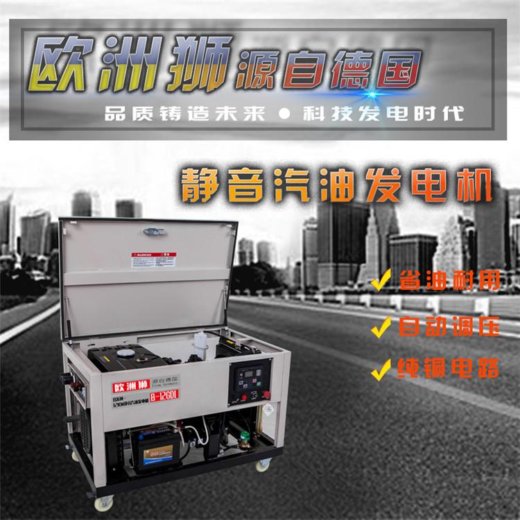 合资12千瓦汽油发电机
