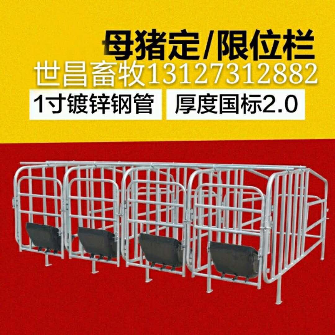 母猪定位栏一组多少个位带食槽的母猪定位栏多少钱一套